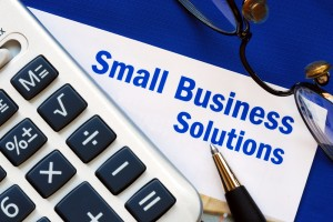 Samll Business Subsidy Calculator